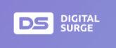 digitalsurge.com logo