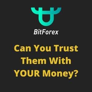 bitforex image